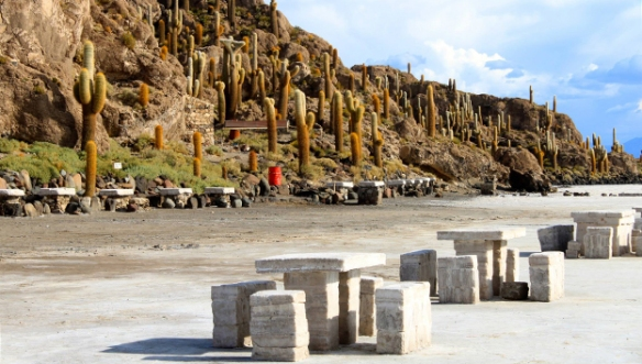 Боливия-остров-кактусов