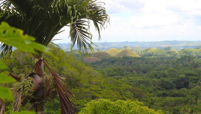 Филиппины-шоколадные-холмы-2